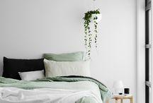 Plant in interiors