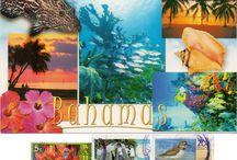 North America - Bahamas
