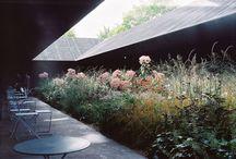 kukkia ja lehtivihreää / kukkia, kasveja, kasviksia, hedelmiä, marjoja, lehtivihreää