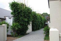 backyard landscaping ideas / by Becky McA