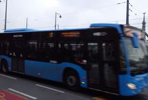 Buses / World of buses