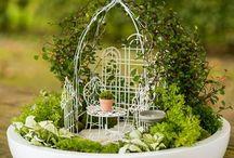 Mini gardens / Mini tuintjes Mini gardens Miniature garden