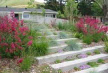 Home - Garden Inspiration / by J-A