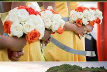 wedding + parties