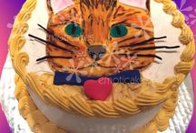 Cat & Dog cakes / Sometimes the only way to celebrate a party is with a cat or dog cake or cupcakes! Here are some ideas from www.emoticakes.com