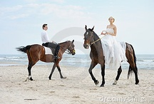 Emma O WEDDING PHOTOS