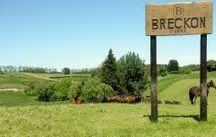 Breckon Farms / At Breckon Farms