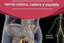 Ejercicio para nervio ciatico