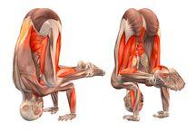 yoga nogi