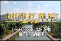 SINGAPORE Travel / Singapore is an easy city to travel to for first time travellers. It's a young country so everything has been thought of when the population was growing rapidly.