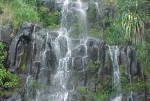 My Island Home--Maui