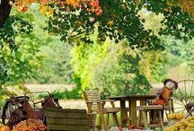 0 autumn backgrounds / by Alison Haan