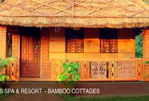 Mangalore Resorts / Wild Woods Spa and Resort is leading hotel in Mangalore, nestled in the midst of nature for a relaxed & fun-filled vacation.