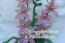 Orchidea és szerencsebambusz együtt / Kellemes színben pompázó orchidea gyöngyből ,