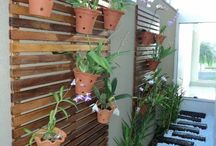 Jardins Externos Pequenos em Corredores! / Veja + Inspirações e Dicas de decoração no blog!  www.construindominhacasaclean.com