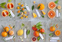 Citrus recipes