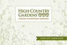 Gifts for Gardeners / Great gift ideas for the Gardeners in your life.