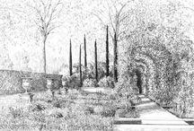Garten planen / Gartengestaltung Gartenplan 2D 3D