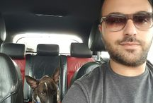 ZaraTheBullTerrier / my crazy dog Zara the Bull Terrier