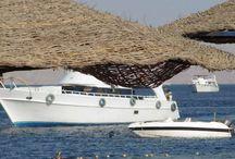 Sharm El Sheikh / Sharm El Sheikh (cea mai apropiata destinatie exotica ) este situat in sudul peninsulei Sinai, la Marea Rosie in Egipt. Aici veti gasi hoteluri de toate categoriile, de la cele mai accesibile (hoteluri de 3* si 4*) pana la hoteluri de lux de 5*. Caracteristicile cele mai importante ale litoralului din Sharm El Sheikh sunt: caldura soarelui, marea cu apa cristalina, nisipul fin si multa, multa distractie...