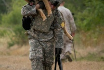 MILITARY DOGS!!!!!