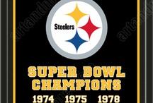 Go Steelers, Go!!!