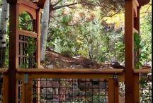 Arbors, Gates, Entrances / Gates arbors fences I find ineresting