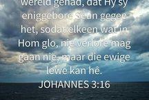 Beloftes aan God