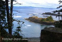Tofino Hiking Trails / Some of the pics from the hikes in Tofino and Ucluelet.