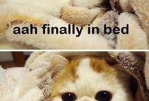 Cutee!!