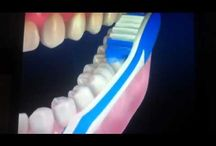 Dental Health Videos / Find out how to avoid your dentist!