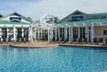 Palms of Cortez pools