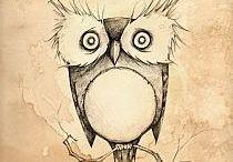 Fav Owl