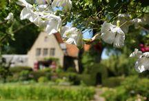 De Vlaamse bloeiende tuincultuur / Ook in Vlaanderen kent men tegenwoordig een bloeiende tuincultuur. Steeds meer tuineigenaren zijn bereid hun fraaie bezit met anderen te delen.