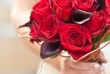 Bouquet / Плотность