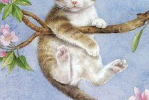 Gaticos lindos y tiernos