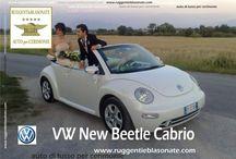 VW MAGGIOLINO & PULMINO
