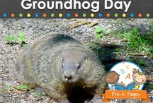 Groundhog day / by Amy Palmer-Perrier