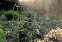 Gardening / by Claudia Garcia