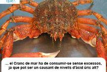 Cranc de mar / Cangrejo de mar / Aquí trobaràs curiositats sobre el cranc de mar / Aquí encontrarás curiosidades sobre el cangrejo de mar