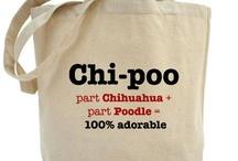 Chipoo