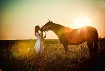 Horse photography <3