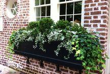 kertészkedés / ötletek