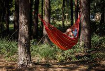 De Wildenberg / UNIEK: Vrij kamperen in ongerepte natuur! Geen wegen, geen paden, geen afgezette kampeervelden, geen auto's en geen caravans: De Wildenberg is een ongerept stuk schitterende natuur van 10 hectare binnen RCN de Flaasbloem.
