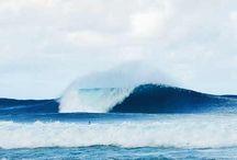 Sea, salt, surf, sand