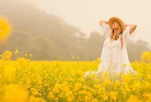 Colour ~ Sunny Day / Orange & Yellow