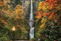 Oregon-USA