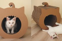 DIY cat