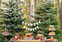 Fall with all the fun / Here you can find both DIY and recipe that has do do with fall.