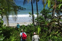 Panama Tours / Information regarding excursions and tours in Panama.